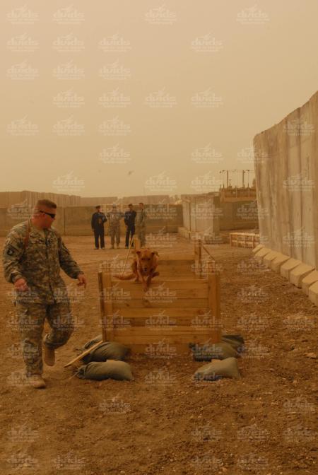 iraqi-k91